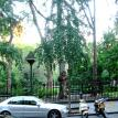 Gramercy Park Townhouse (view to park)